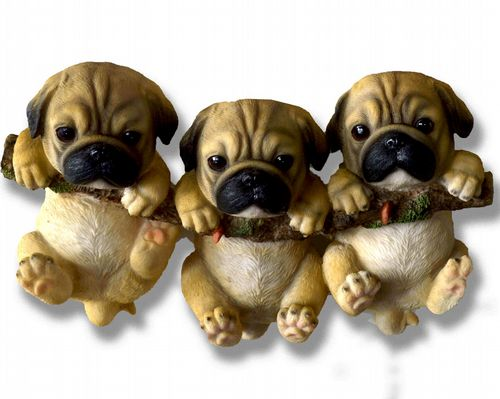 Light Pug Puppy Triplets On A Branch
